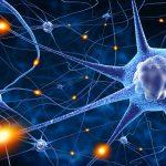 Kerja Otak Maksimal dan Ingatan Kuat Jika Anda Berhenti Melakukan Hal Ini
